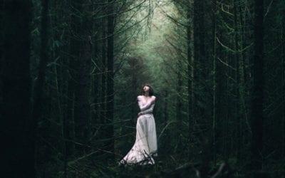 Лес и сны